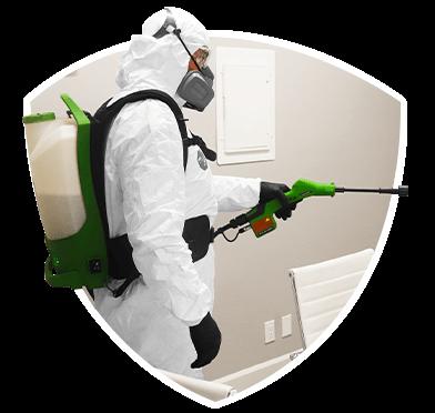 Apartrment Disinfection