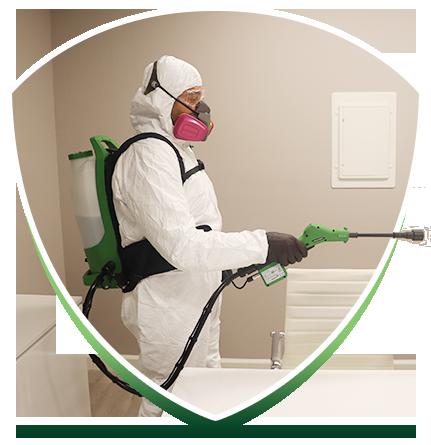 safe spray solution